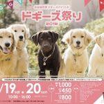 第1回ドギーズ祭り 愛犬とオーナーのための初イベント!