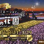 マザー牧場のイルミネーション 2019-2020 光の花園